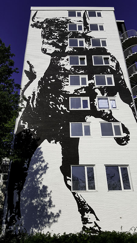 victor_ash_bull_amsterdam_3